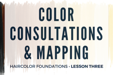 Color Consultations & Mapping • $65