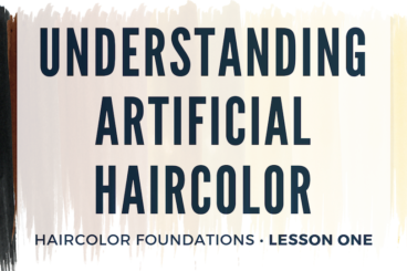 Understanding Artificial Haircolor • $65