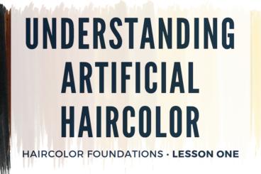 Understanding Artificial Haircolor • $65
