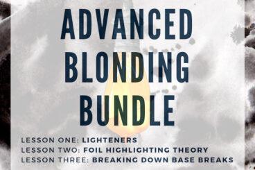 Advanced Blonding Bundle • $195