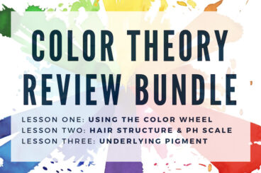 Color Theory Review Bundle • $195
